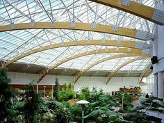 Long span roof structure constructed using slender laminated timber arches