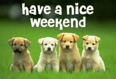 1000+ images about Happy Weekend!! {RELAX} on Pinterest ...