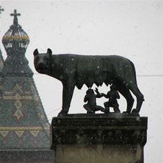 Timisoara, Romania. The she-wolf suckled Romulus and Remus (founders of Rome) points out that Timisoara and Romania was dominated by the ancient Romans