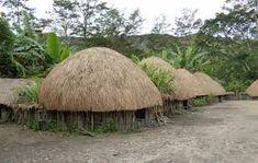 Hasil gambar untuk rumah adat papua