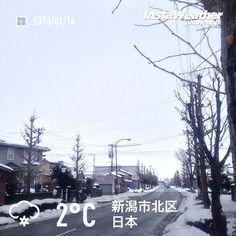 おはようございます! 雪は少なめ、雨も混じってます〜