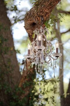 Chandelier hanging from tree Red & Rustic Squires Farms Wedding  Photographer: Oracle Imaging & Design