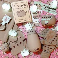 This box was so good it makes us almost miss winter #regram via @battydana #pusheen #pusheenbox