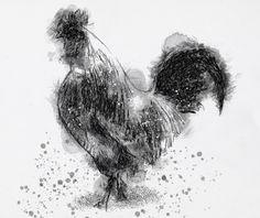 One of my sketch a day drawings Cockerel  #bird #cockerel #drawing #sketch