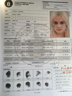 Harley Quinn's criminal record from Suicide Squad