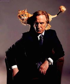 Alan Rickman - men & cats