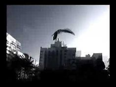 Devendra Banhart inaniel - YouTube
