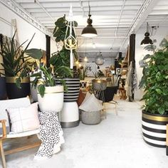 The Design Twins store sells unique, handmade homewares, designer pots and Furniture. Come by to the pot bar and have your pots painted for pick up that day.