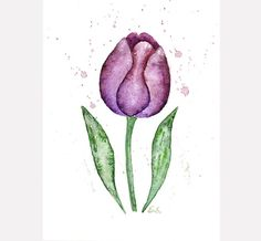 Floral watercolor Tulip painting Original watercolor Spring home decor Floral wall art Flower botanical art Violet purple by BluePalette on Etsy https://www.etsy.com/listing/150364773/floral-watercolor-tulip-painting