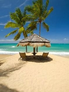 Exotic Beaches -   Relaxing With a View