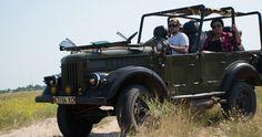 Внедорожник ГАЗ-69 в траве