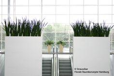Florale Elemente als optischer Blickfang an Rolltreppe,  Hamburg Messe, Dekoration Messestand, decorations fair Hamburg