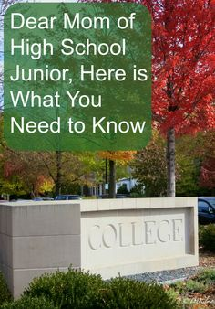 college scholarships for high school juniors College scholarships for high school juniors are available around the united states from various organizations.