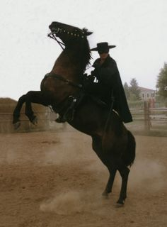 "Zorro...the secret identity of Don Diego de la Vega, a legendary Spanish-speaking nobleman who had a large ranch in Southern Califormia before it became a state.  Zorro (""the Fox"") helped local citizens who were oppressed by corrupt government officials."