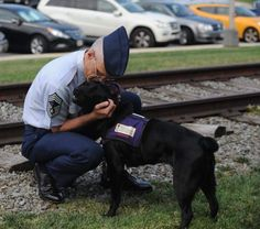 New study will measure dogs' usefulness to vets with PTSD