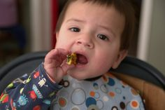 Finger foods for new eaters