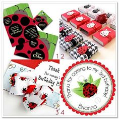 More ladybug party favors!