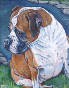 Kadi the Fawn Boxer Dog by Pond Custom Pet Portrait