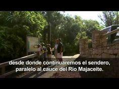▶ Ruta Sierra Cádiz: Sierra de Grazalema -