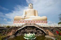 A Buddha Statue in Sri Lanka