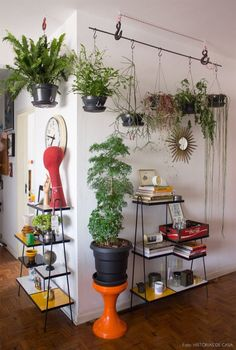 35 Amazing Indoor Garden For Apartment Design Ideas And Remodel. If you are looking for Indoor Garden For Apartment Design Ideas And Remodel, You come to the right place. Here are the Indoor Garden F. Hanging Plants, Indoor Plants, Diy Hanging, Indoor Gardening, Hanging Bar, Hang Plants From Ceiling, Gardening Tips, Indoor Plant Hangers, Photo Hanging