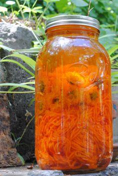 Coreopsis Solar Dye natural orange yellow fabric plant dye