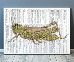 Amazing Grasshopper print. Gorgeous Insect decor for your home and office. Adorable Bug poster. Pretty contemporary Modern print.  SIZES: A4 (8.3 x