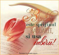 Jesus Loves You, God Jesus, Bible Verses, Love You, Sayings, Quotes, Adele, Zen, Bible