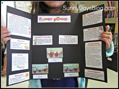 Sunny Days in third Grade: Science Fair Made Easy (and Free!) Have kids make Mini-Boards that match your Science Fair board...then encourage them to keep it as a model for their independent 4th grade board! love this idea!!!