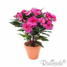Impatiens Bush Artificial Silk Plant - Bright Pink Gorgeous red core  £10.99 [$20 USD]