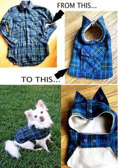 Из рубашки - для собаки