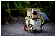 Danbo just married