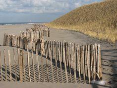 Maasvlakte2