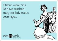 "I am and probably always be on Team Dog but I do like cats. And there are lots of funny cat-centric things that catch my eye.   So how many cats does it take to be a ""crazy cat lady""? And how many yar"