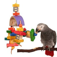 Over The Rainbow Senior Parrot Toy Chock full of colourful wooden and plastic beads.