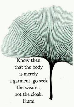 go seek the wearer....