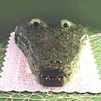 Crocodile Cake. @Katelyn Mitchell. Check this out!