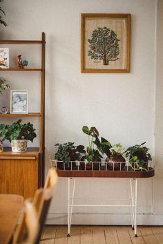 De botanische stijl: 25x mooie voorbeelden van hoe je planten gebruikt in het interieur. Op planken, rekken, kasten etc. Lees hier alles over planten!