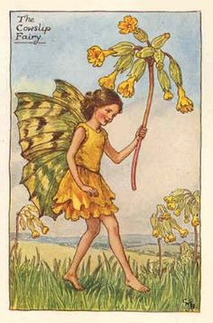 FLOWER FAIRIES 1930: COWSLIP. Delightful old vintage print by Cicely BARKER.