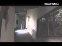 Japanese Ghost Sighting
