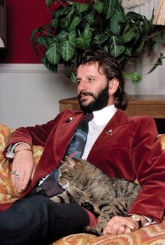 Ringo Starr and tabby cat friend. Foto Beatles, Les Beatles, John Lennon Beatles, Beatles Photos, Ringo Starr, George Harrison, Richard Starkey, Cinema, The Fab Four
