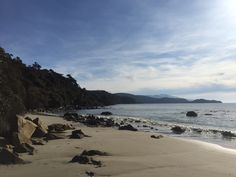 Lee Bay, deserted as per usual! Forest Hill, Amazing Destinations, New Zealand, Island, Beach, Water, Life, Outdoor, Gripe Water