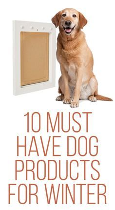 Winterize and pet proof your house with these 10 Must-Have Dog Products for Winter.