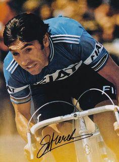 MERCKX - Eddy Merckx - original signiert - signed - 41a | eBay