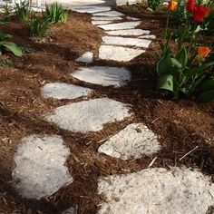 Roots And Shoots Unique Garden Decoration Crazy Paving Stepping Stones Pack Of 2