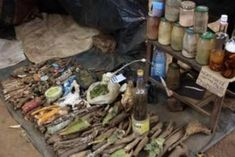 I am a traditional herbalist my herbs cure all manners of sicknesses I have helped a lot of of people from different. Cast A Love Spell, Love Spell That Work, Lost Love Spells, Powerful Love Spells, Vampire Spells, Mermaid Spells, White Magic Spells, Money Magic, Love Spell Caster