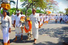 https://flic.kr/p/odVqZa | Memukur, balinese traditional culture.   #memukur #traditional #culture #traditionalculture #bali #baliculture #balinese #people #balipeople #indonesia #travelingindonesia #kebudayaan #kebudayaanbali #balitradisional