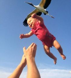 18 Perfectly Timed Photos That Will Fool Your Eyes 28 - https://www.facebook.com/diplyofficial