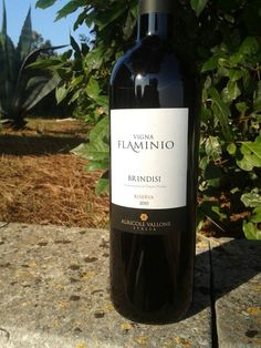 Bavo Papone! Vigna Flaminio 2010 #vallone #puglia #weareinpuglia