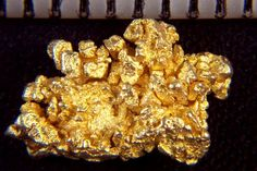 Octahedron Gold Crystals from Round Mountain